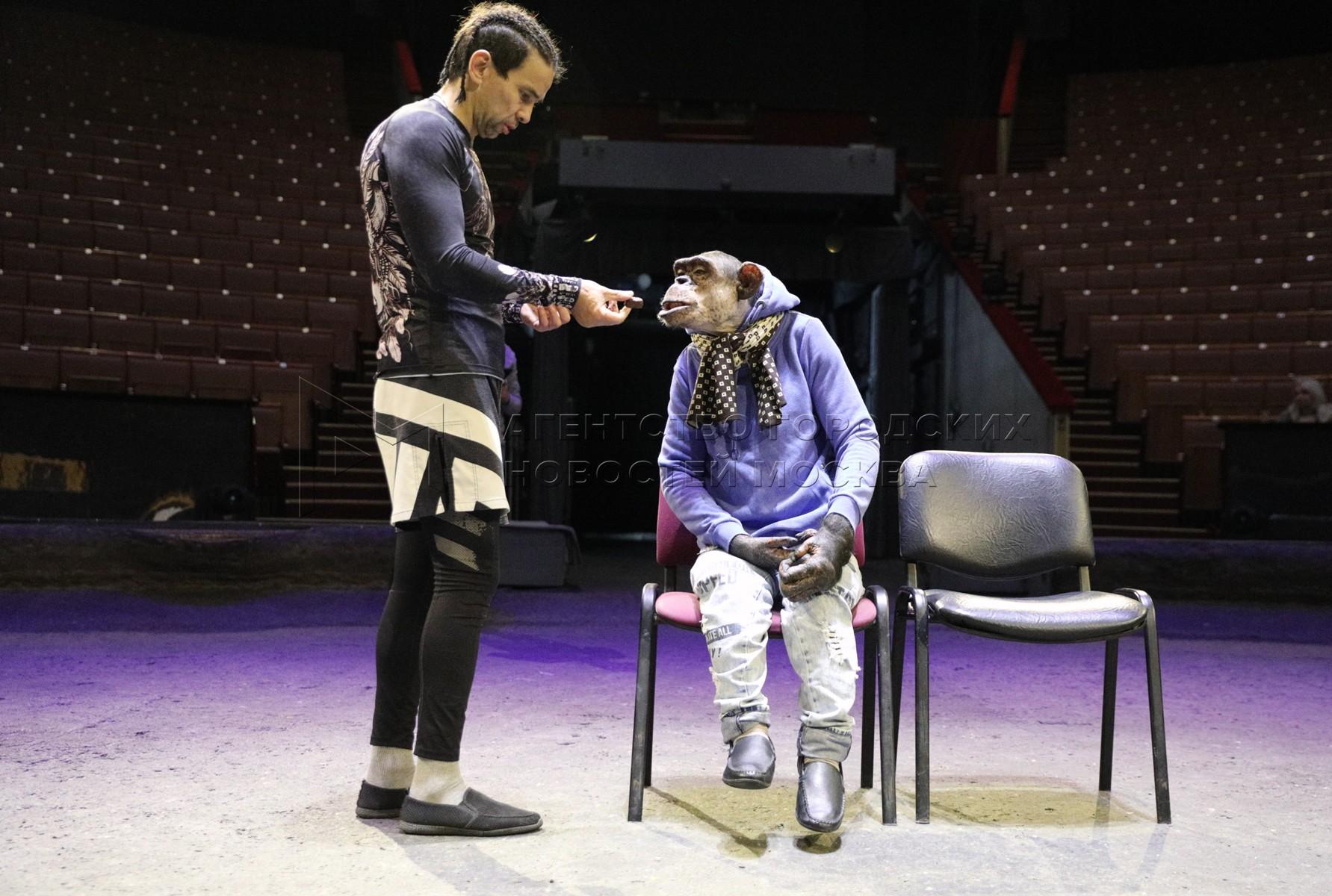 Дрессировщик Мурад Хыдыров и шимпанзе Микки из Большого Московского цирка на проспекте Вернадского, нарисовавший картину.