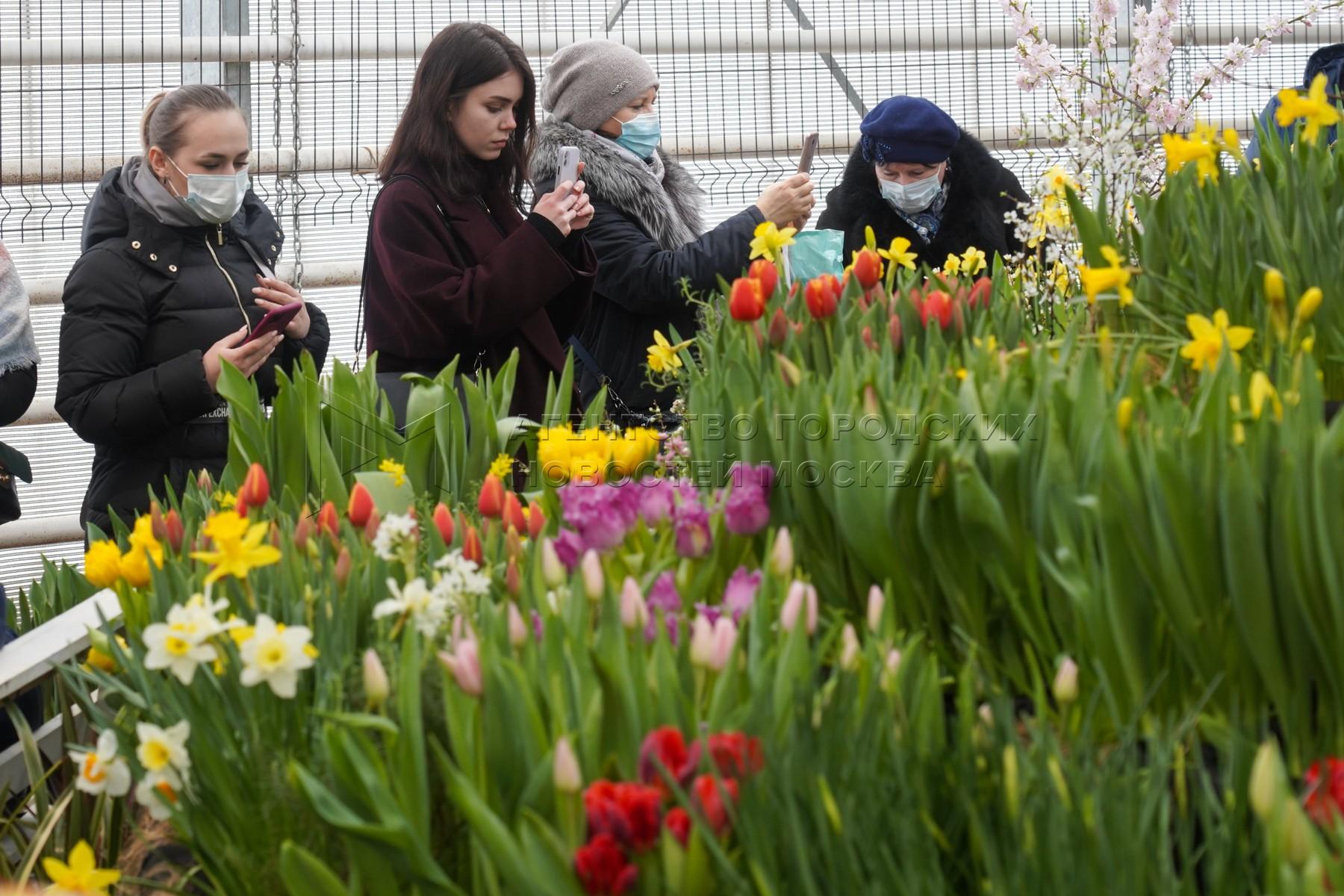 Фестиваль тюльпанов в Аптекарском огороде.
